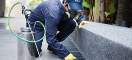 Pest Control Tips For Your Workplace