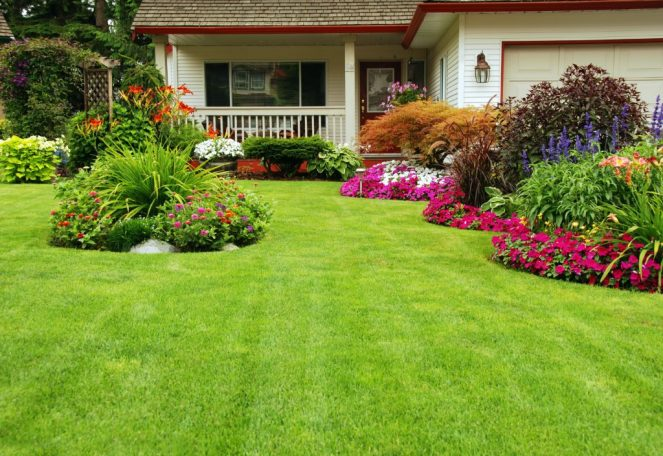 What Are The Importance Of Gardens
