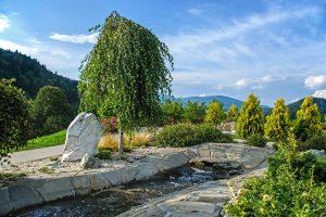 garden-1549964_960_720