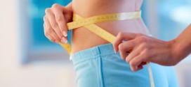 Non Essential Amino Acid Compoundsaiding Weight Loss